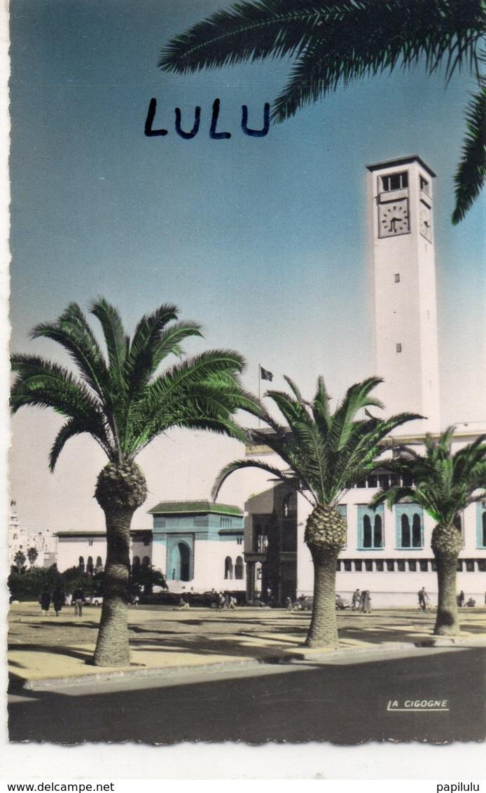 MAROC : Casablanca Municipaux Et Tribunal : édit. La Cigogne N° 95 101 57 - Casablanca