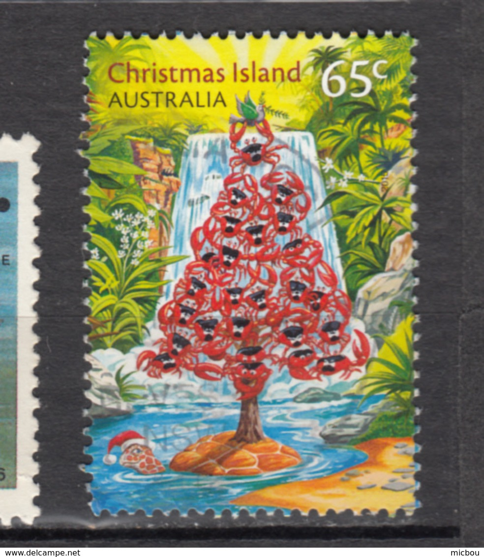 Christmas Island, Tortue, Turtle, Chute, Fall, Crabe, Crab, - Schildkröten