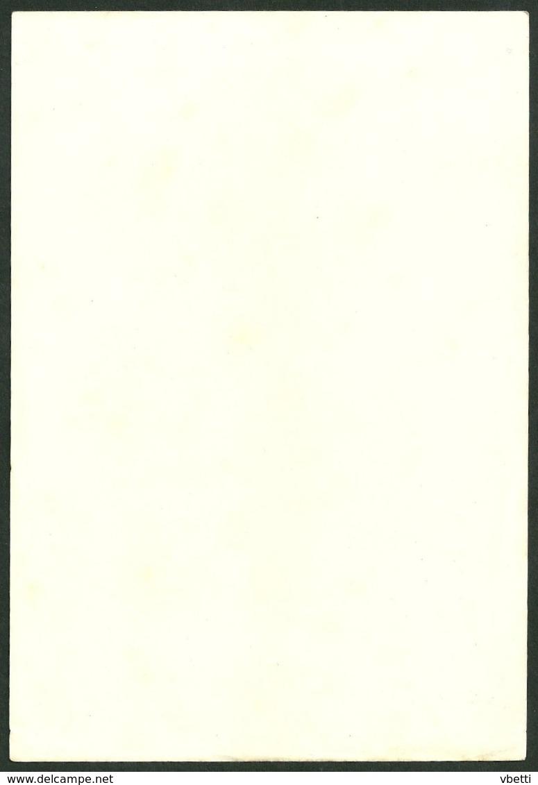 Deutsche Propaganda Material Aus Der Zweiten Weltkrieg Zeit: Oberstleutnant Schumacher - Documents