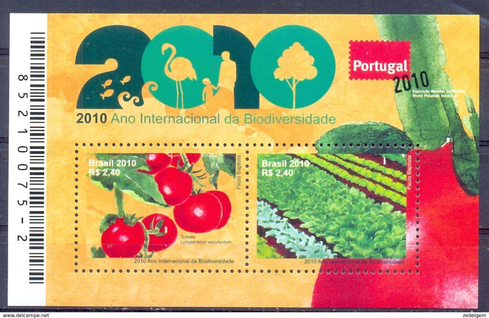 BRAZILIE (AME 180) - Vegetables