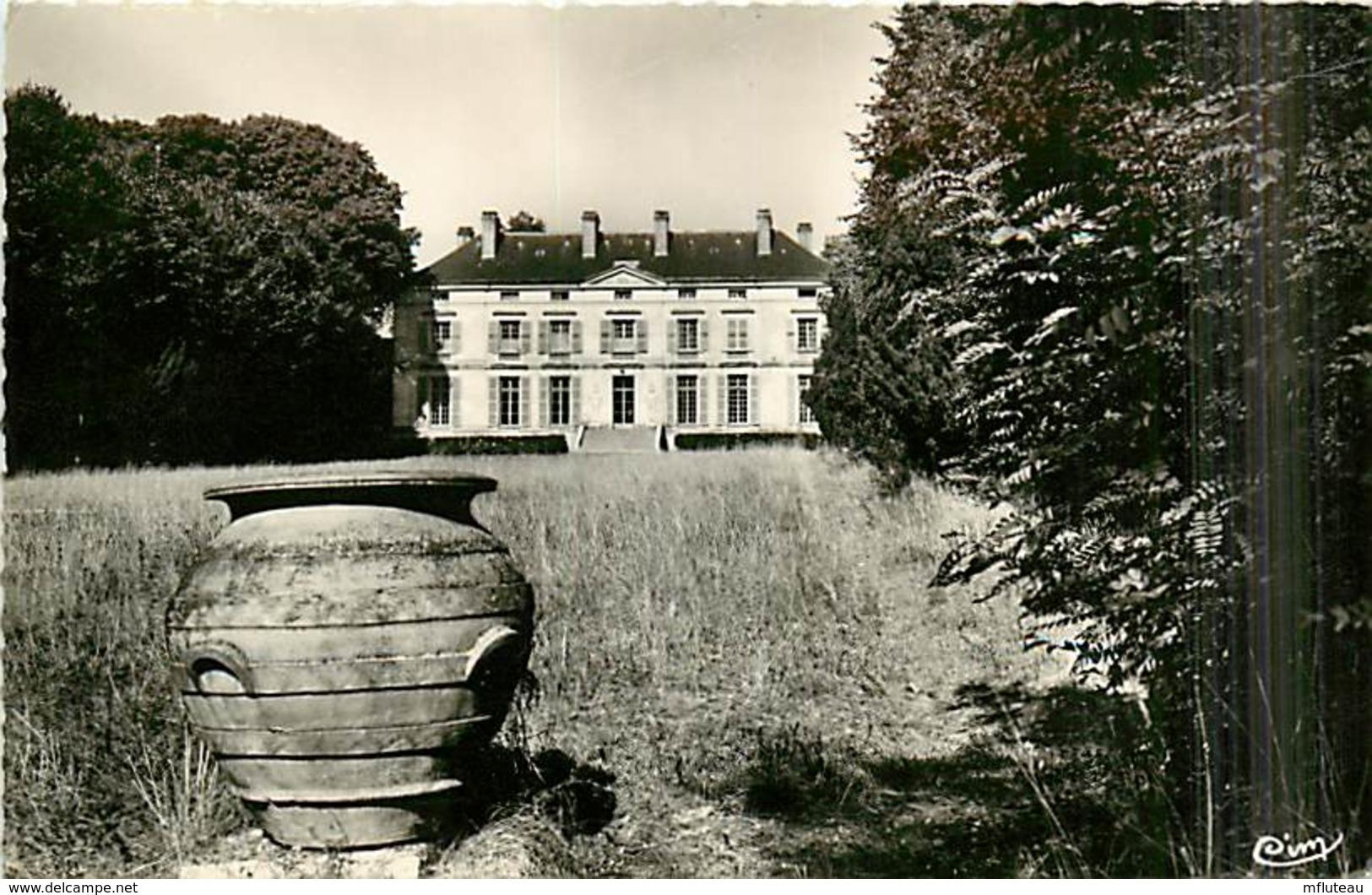 77* CONGIS  Chateau  Du Gue CPSM (petit Format)       MA96,0553 - France