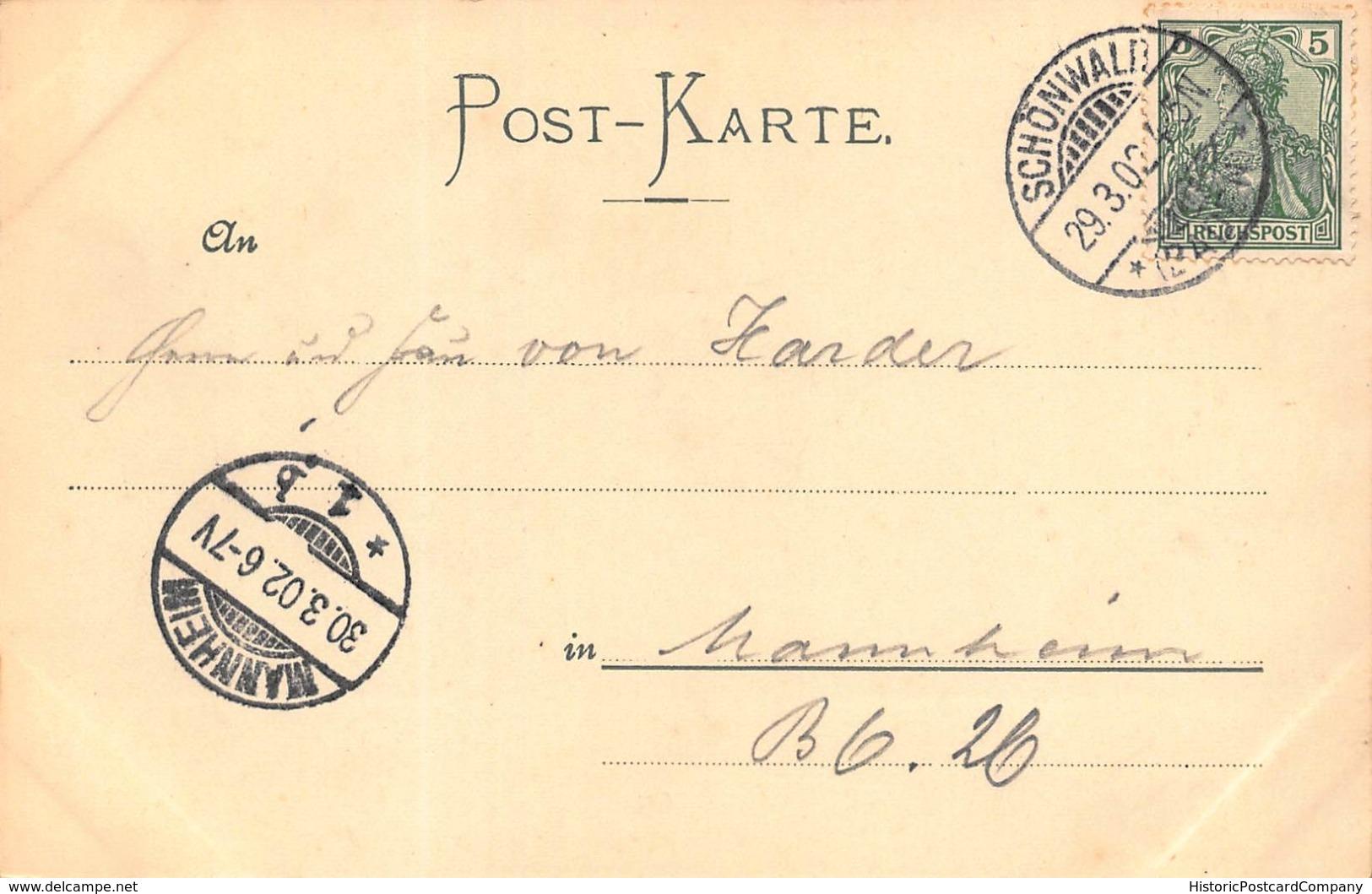 GRUSS Aus Dem SCHWARZWALD~SCHONWALD-THURM STOKLEWALD-KURHAUS HIRSCHEN 1902 PHOTO POSTCARD 42079 - Germania