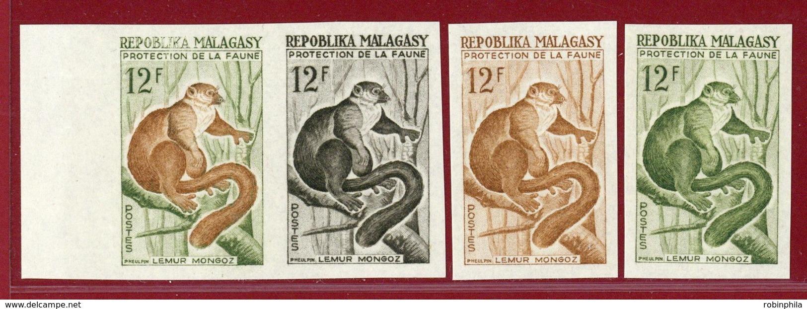 Malagasy Rep 1961 #323, Color Proof X4, Mongoose Lemur, Animal - Madagascar (1960-...)
