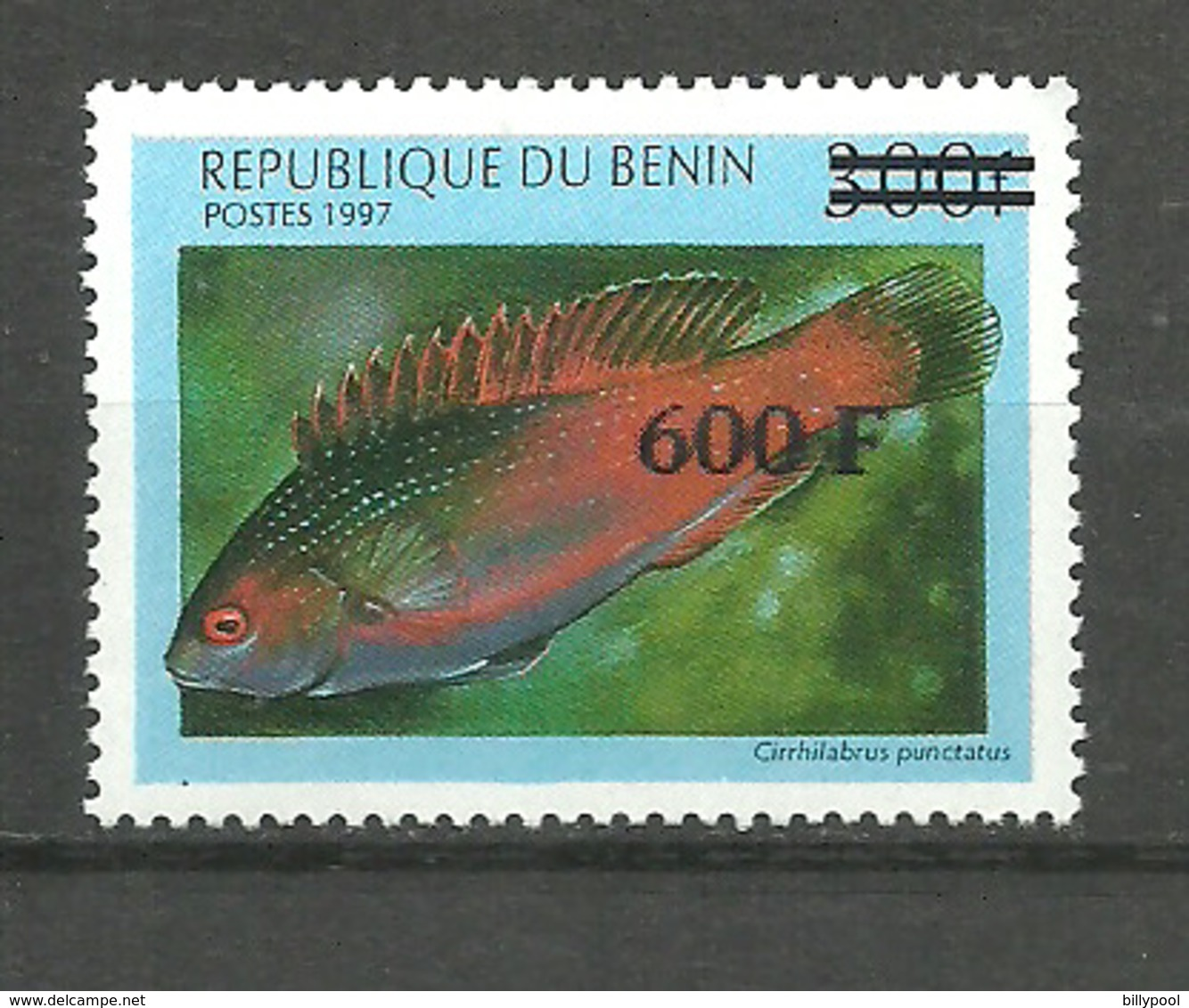 BENIN  1997 Fish, Fishes New Currency Overprint 1v. Perf. Rare! - Poissons