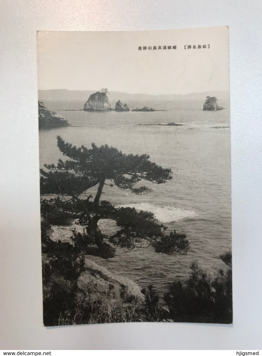 Asia Japan Japanese Card Island Sea Rock View Shore Tree 11473 Post Card Postkarte POSTCARD - Japan