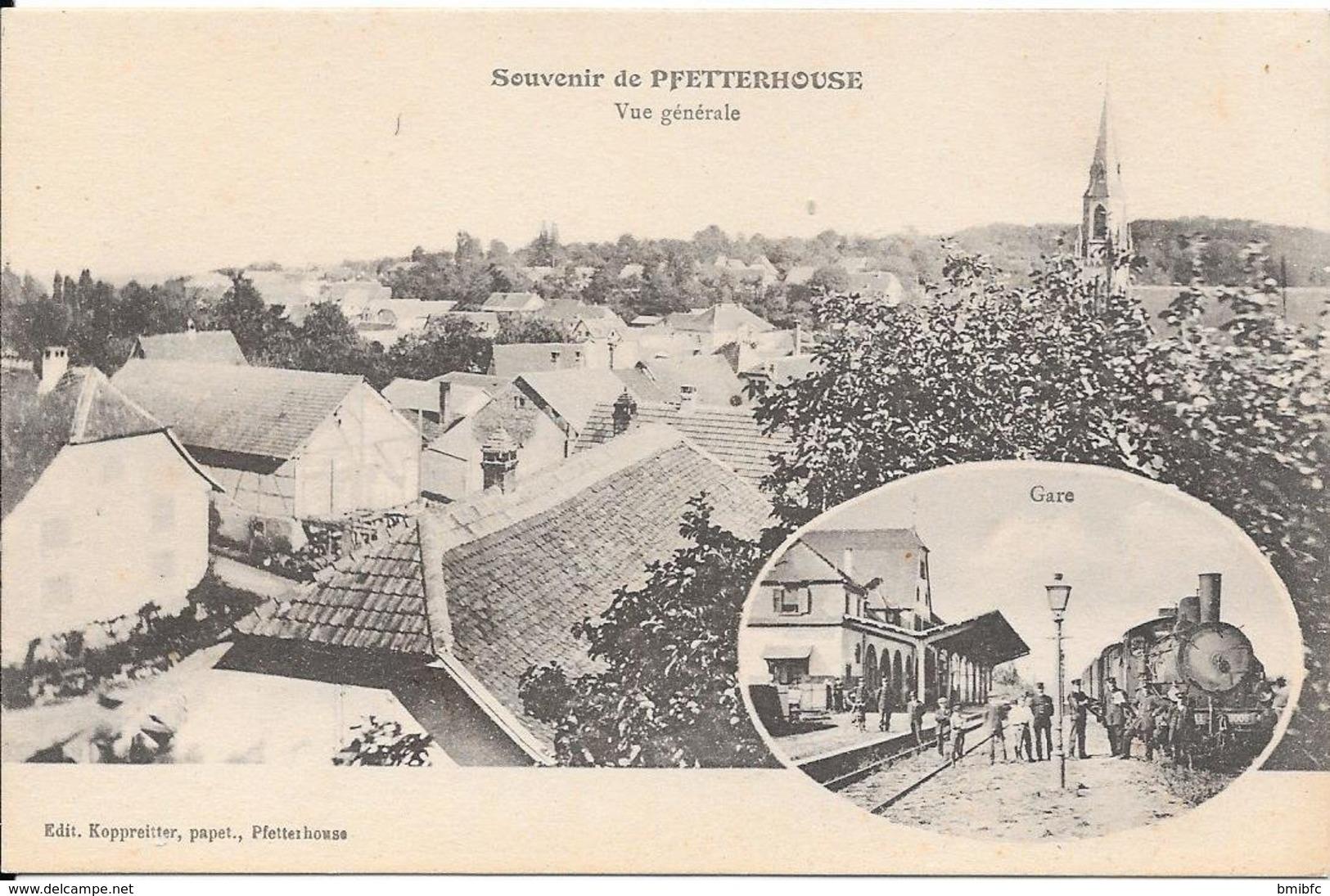 Souvenir De PFETTERHOUSE Vue Générale Et Gare - Autres Communes