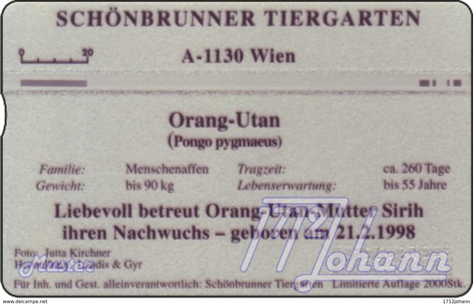 """TWK Österreich Privat: """"Tiergarten Schönbrunn  4 - Orang Utan"""" Gebr. - Oesterreich"""