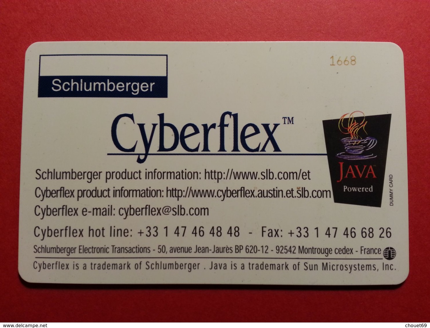 Test Schlumberger Cyberflex Java Papillon Avec Puce Et Numéros Au Verso Demo (BF1217 - Telefonkarten