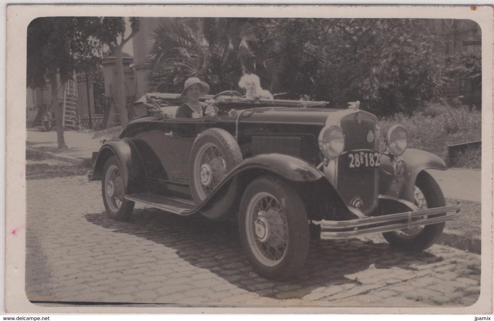 Carte Photo : Belle Automobile Décapotable ( Cadillac ? ) Femme Et Chien - Turismo