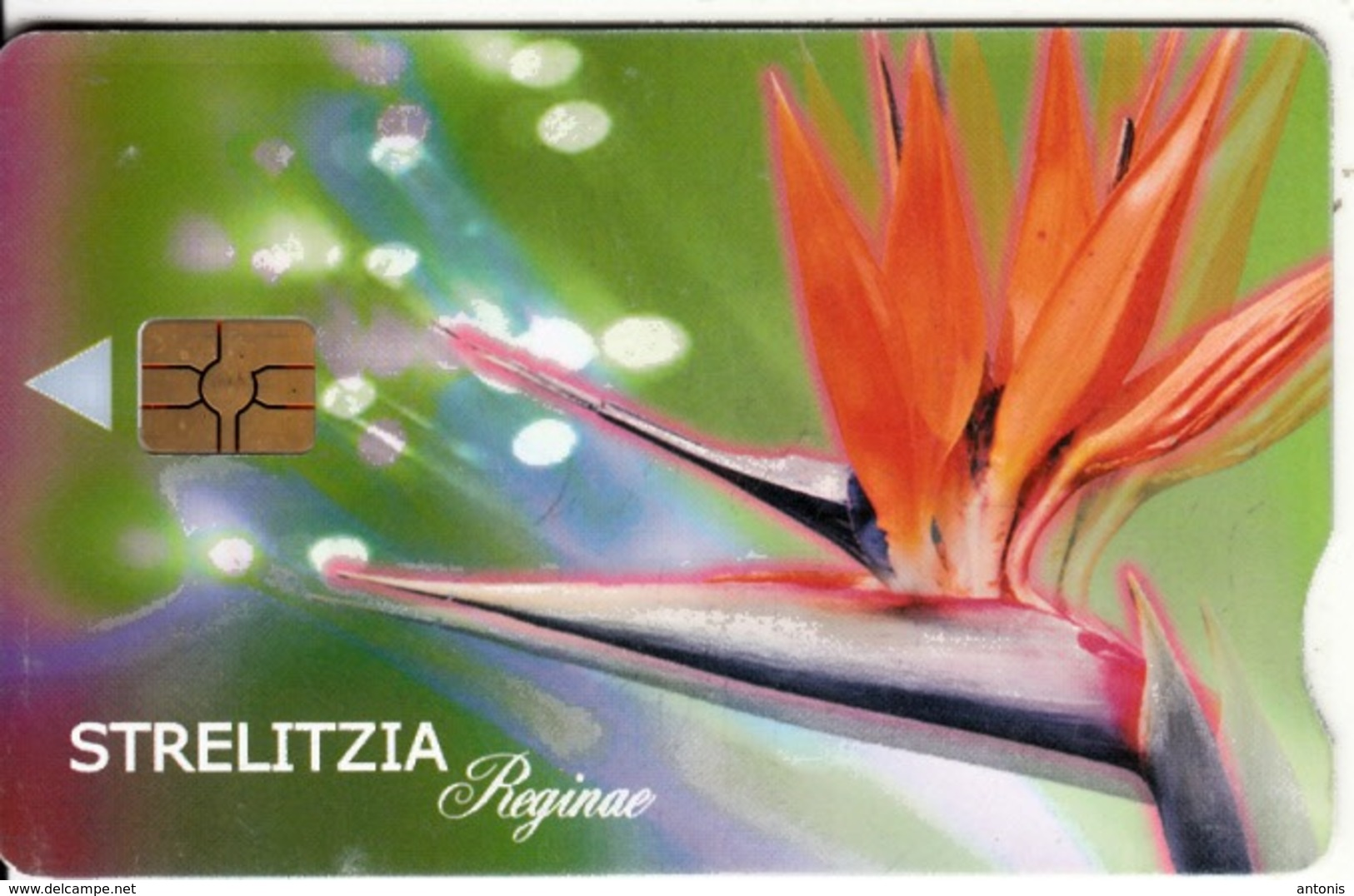 SOUTH AFRICA - Flower, Strelitzia, Telkom Telecard, Chip GEM3.3, Exp.date 05/02, Used - Afrique Du Sud