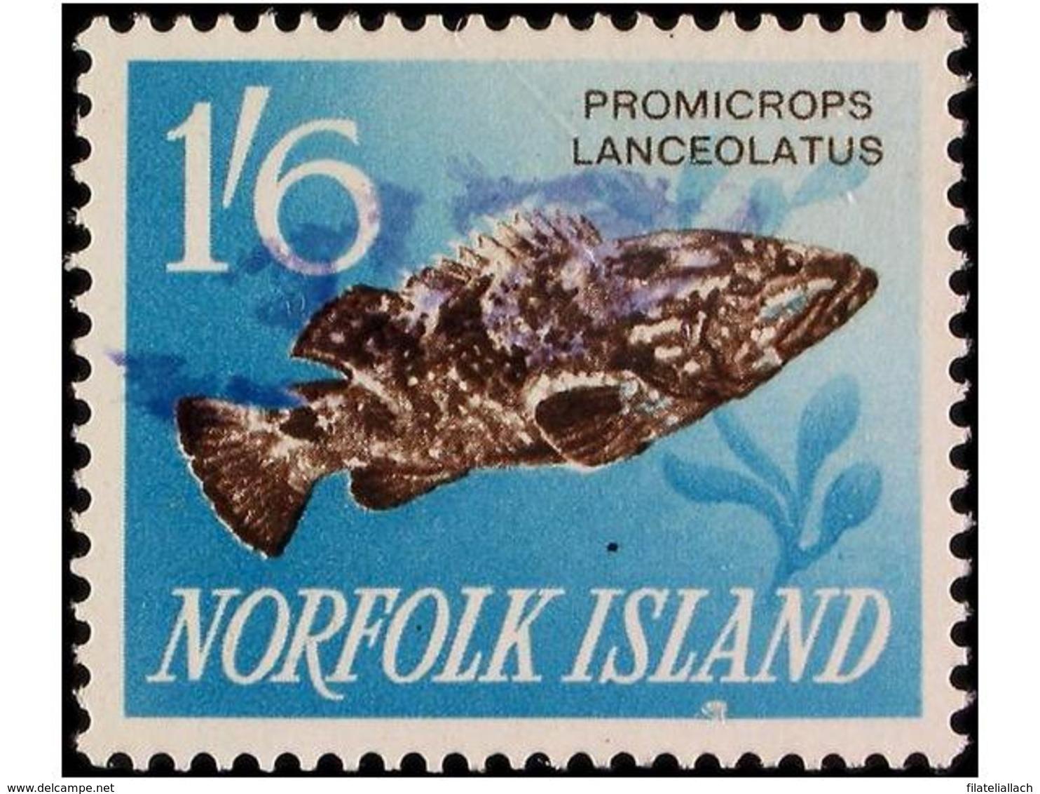 NORFOLK - Isola Norfolk