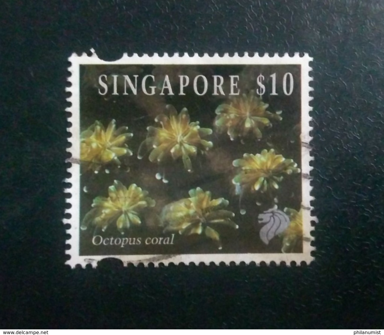 SINGAPORE $10 OCTOPUS CORALS HIGH VAL DEFINITIVE 1994 CAT£10 USED !! - Marine Life