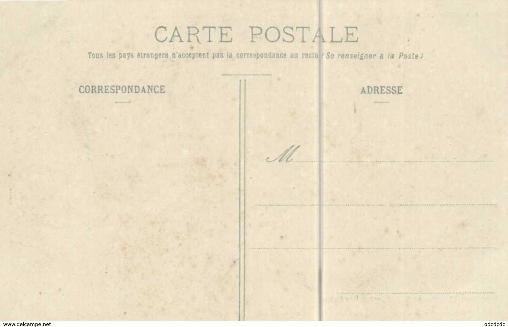 Types Balaguérais Près Castillon (Ariège) Cebrenaire Et Son Ane Colorisée RV - Altri Comuni