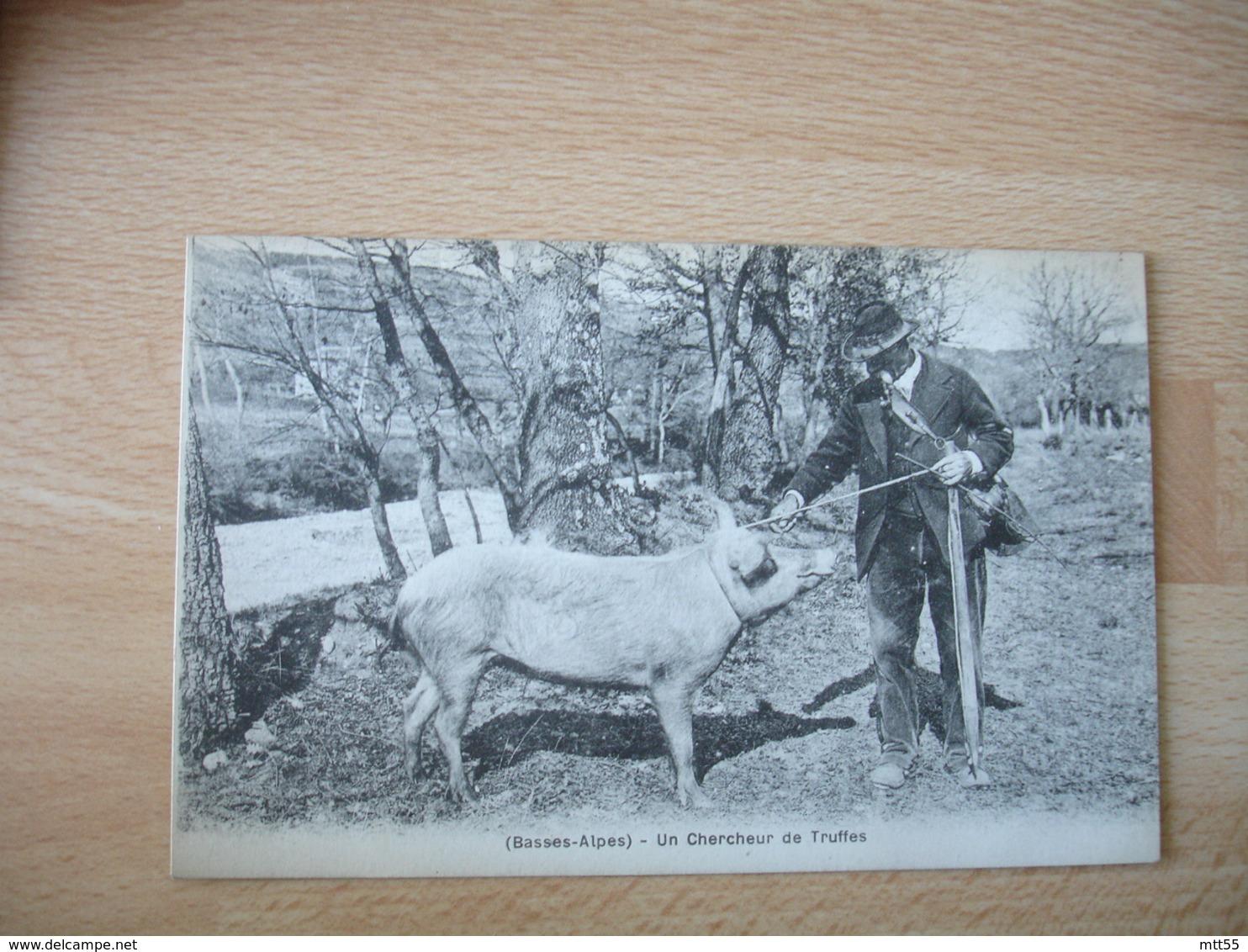 Basses Alpes Cochon Paysan Chercheur De Truffe Truffes - Autres Communes