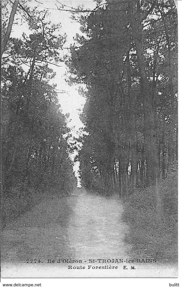 ILE D'OLERON - SAINT TROJAN - La Route Forestière - Ile D'Oléron