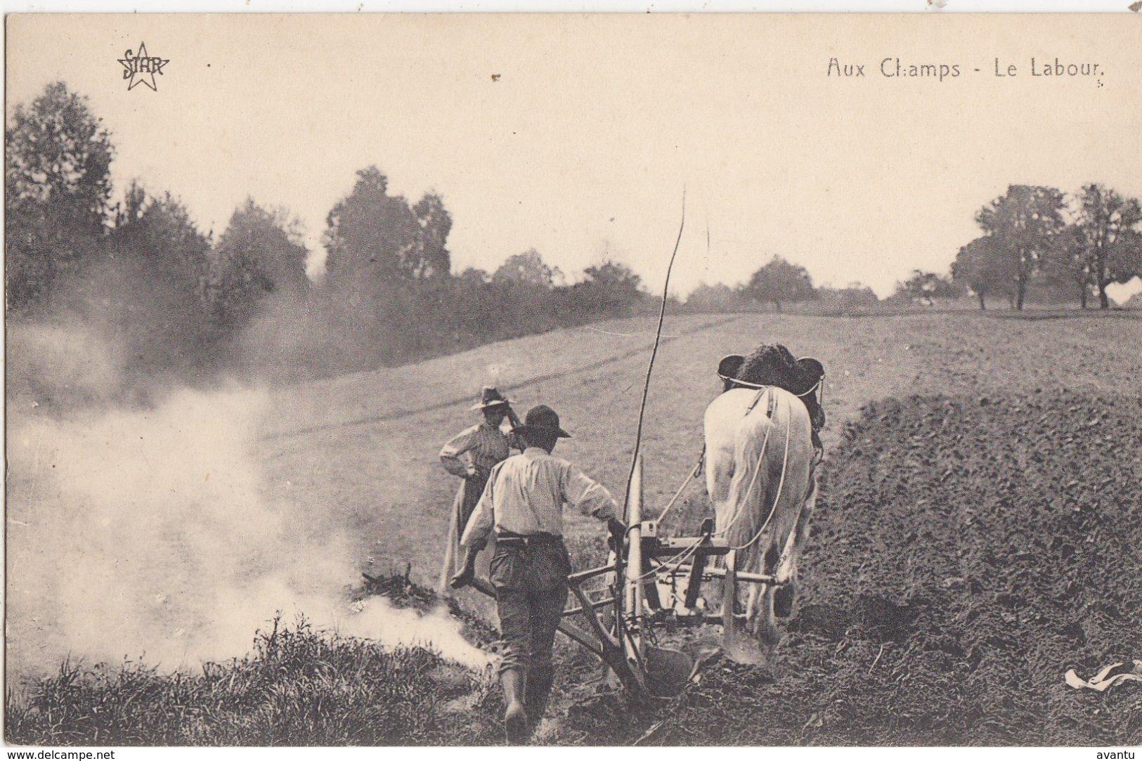 ARDENNES / AUX CHAMPS / LE LABOUR - Belgique