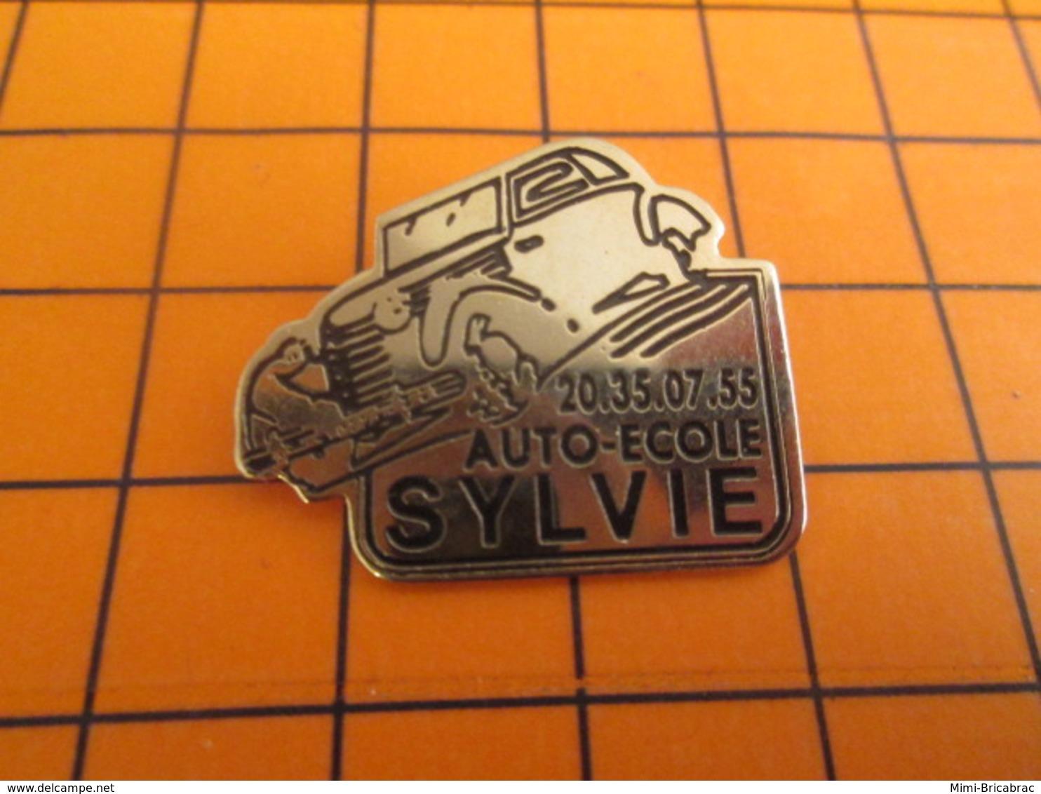 210c  Pin's Pins / Beau Et Rare / Thème AUTOMOBILES / AUTO ECOLE SYLVIE - Pins