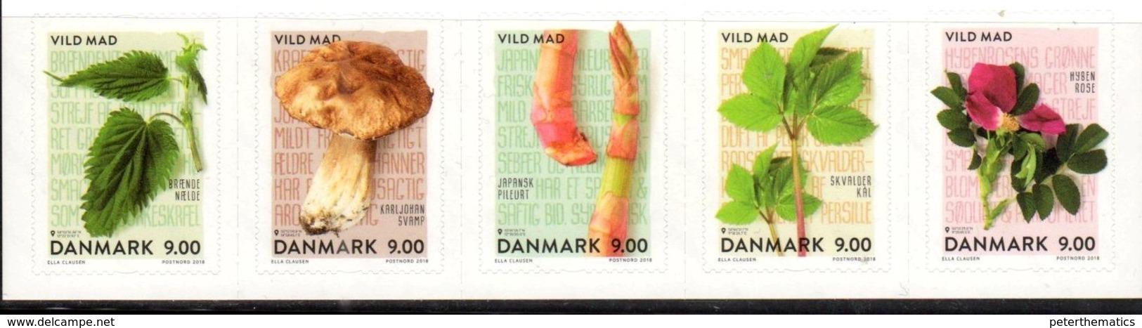 DENMARK , 2018, MNH, MUSHROOMS, ASPARAGUS, PLANTS, 5V - Champignons