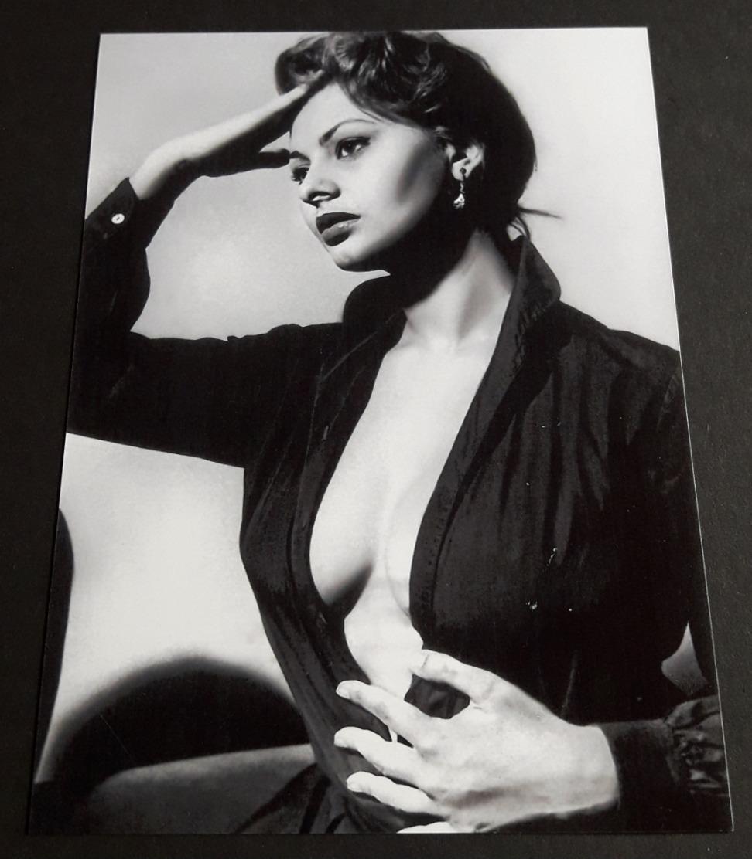 SOPHIA LOREN # Sexy Pin-Up Girl Portrait # Großes Star-Photo, Ca. 13 X 18 Cm # [19-4559] - Photographs