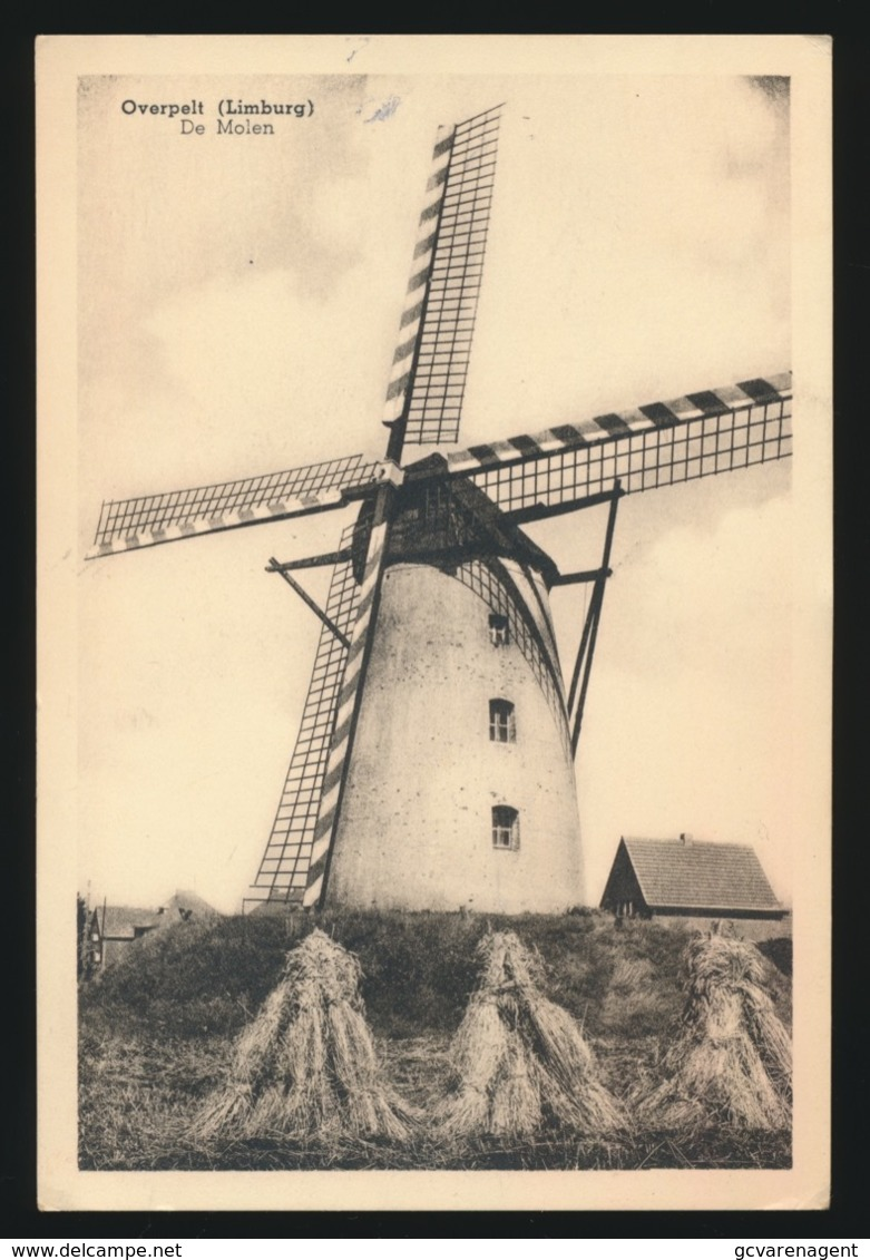 OVERPELT  LIMBURG  DE MOLEN   - 2 AFBEELDINGEN - Overpelt