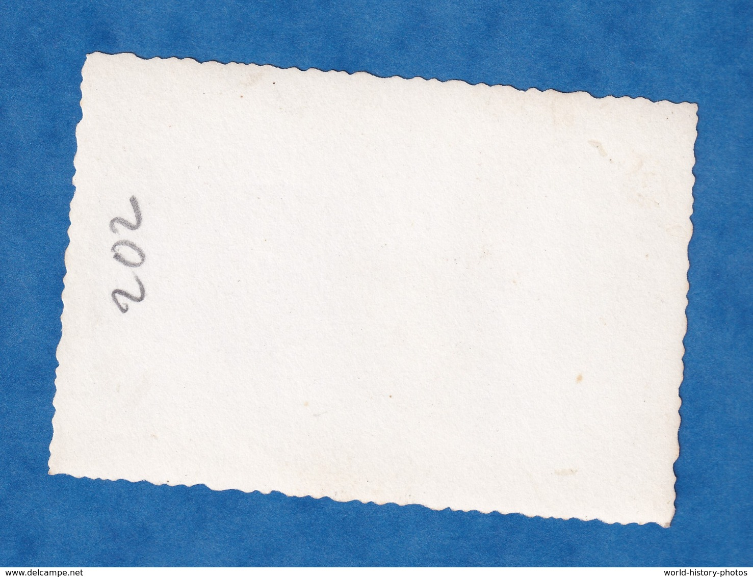 Photo Ancienne - ALGERIE ?- Portrait De Tankiste Sur Char LAVARNIE - Insigne 2e Division Blindée ? - Uniforme WW2 ? DB - Guerre, Militaire