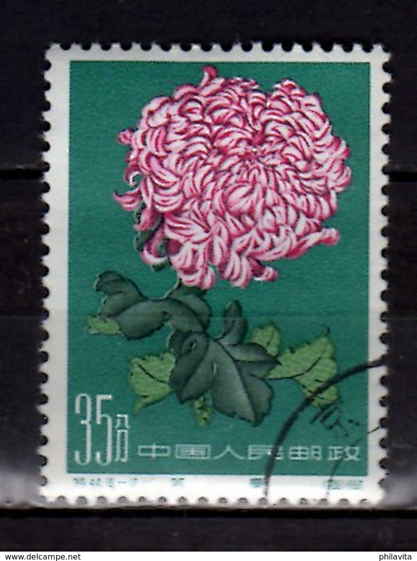 1960 China - Chrysanthemums / Chrysanthemen Used MI 574 - Gebraucht