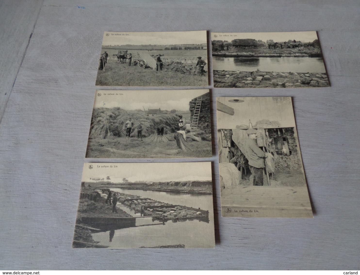 Beau Lot De 10 Cartes Postales De La Culture Du Lin        Mooi Lot Van 10 Postkaarten Over Vlas - Postkaarten