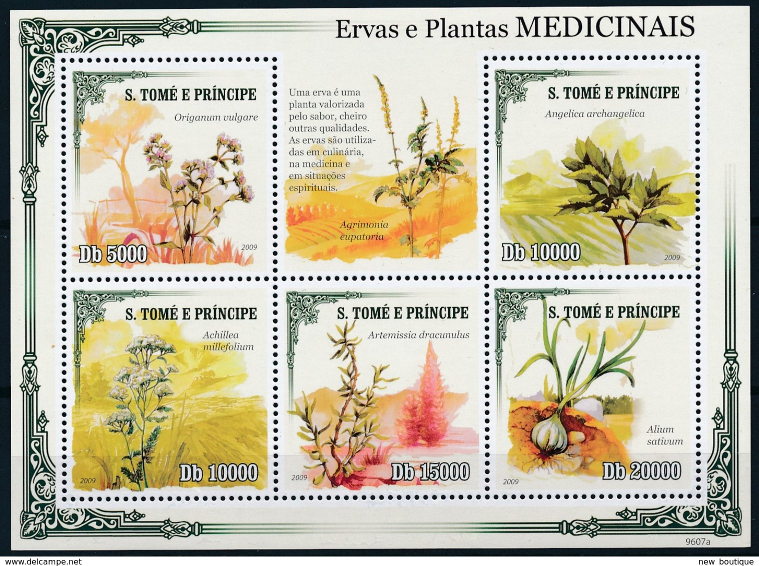 [401631]TB//**/Mnh-Sao Tomé-et-Principe 2010 - Plantes Médicinale, Fleurs, Nature - Medicina