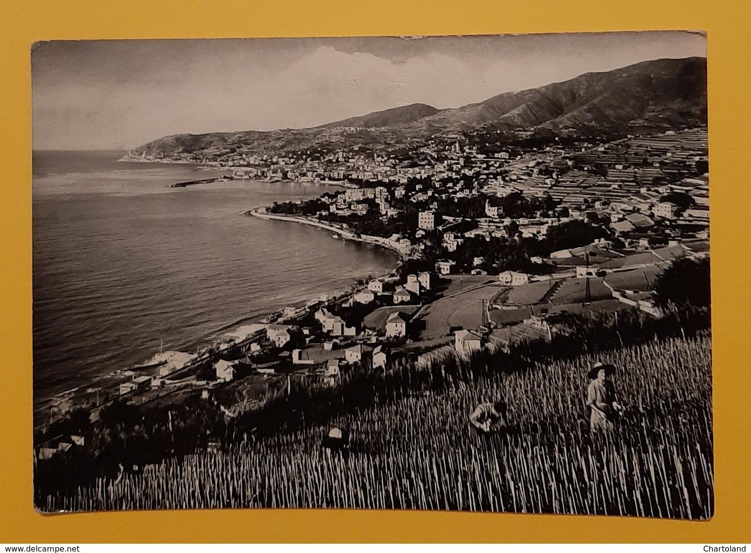 Cartolina Riviera Dei Fiori - Sanremo - 1957 - Imperia