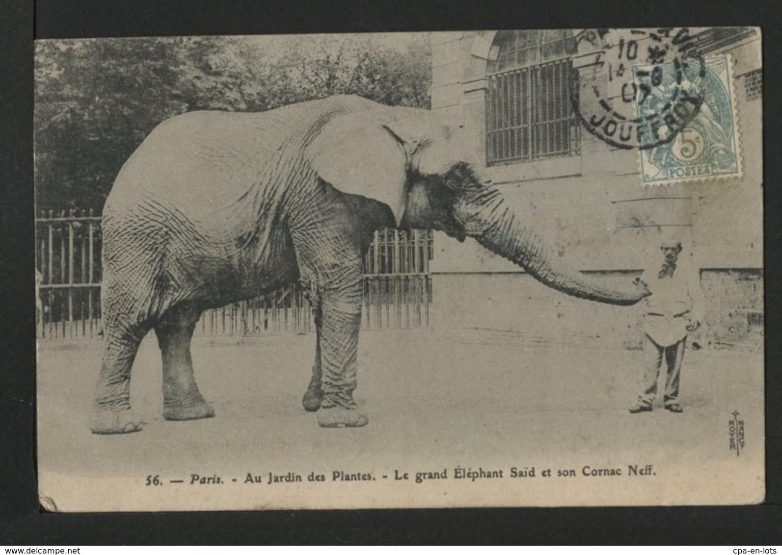 CPA 062 - COUP DE COEUR DE LA BOUTIQUE LOT De 60 CPA Belles Selections Et Gros Plans , à Ne Pas Rater   !! - Cartes Postales