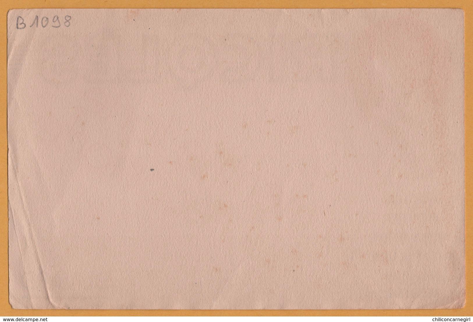 BUVARD Illustré - BLOTTING PAPER - RICQLES - Alcool Menthe - La Menthe Forte Qui Réconforte - Edit. IDEA Saint Ouen - A