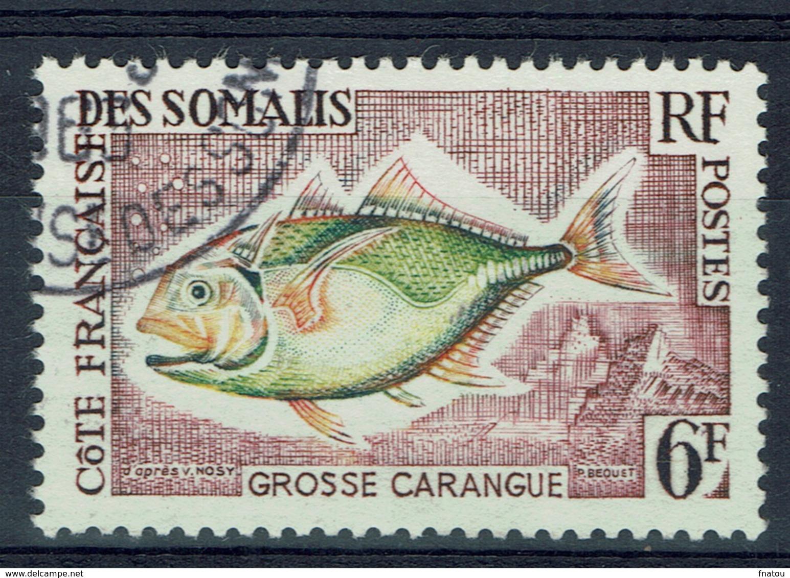 French Somali Coast, Fish, Giant Trevally, 1962, VFU - French Somali Coast (1894-1967)