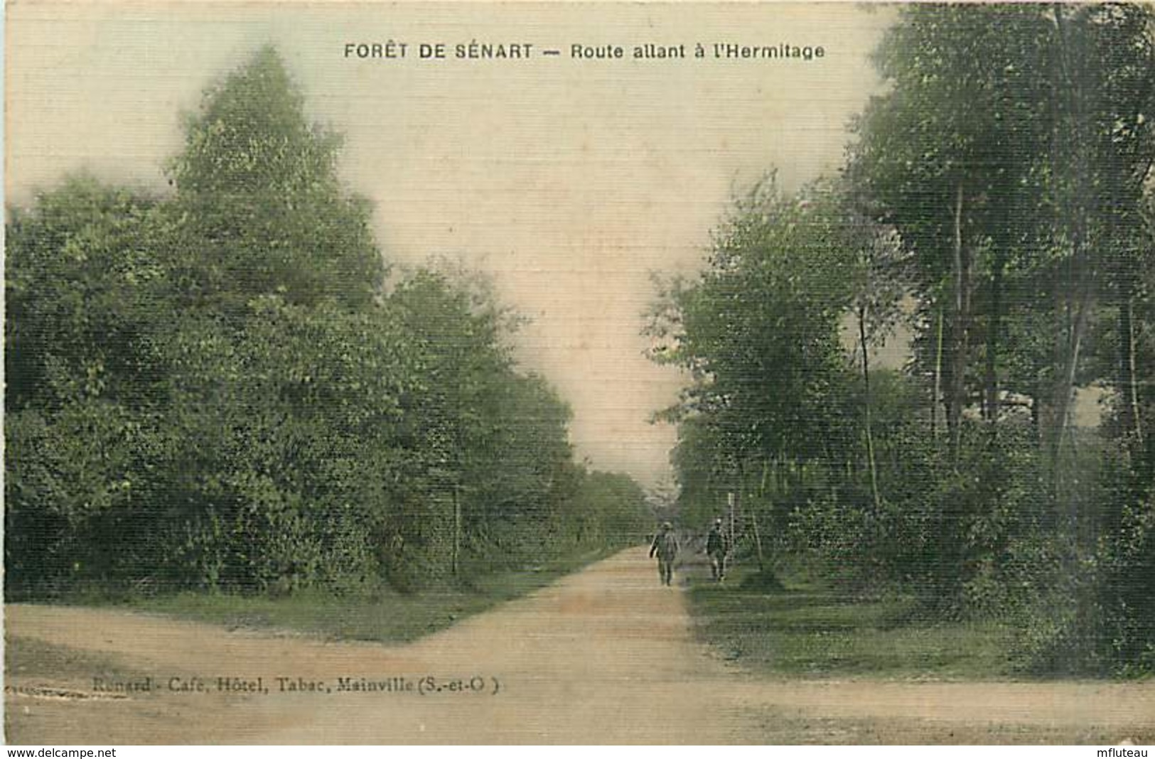 91* SENART  Foret             MA98,0042 - France