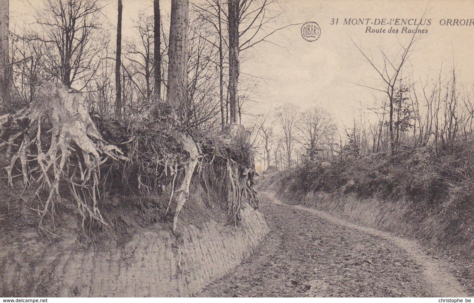 Mont De L'enclus, Orroir, Route Des Racines (pk65174) - Mont-de-l'Enclus