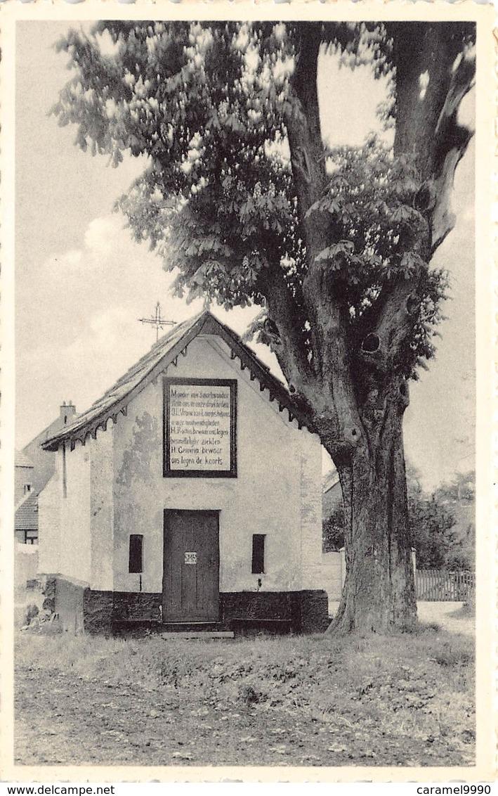 Beringen  Het Smeedskapelleke In De Broeckhoven Kapel Broekhoven   M 1566 - Beringen