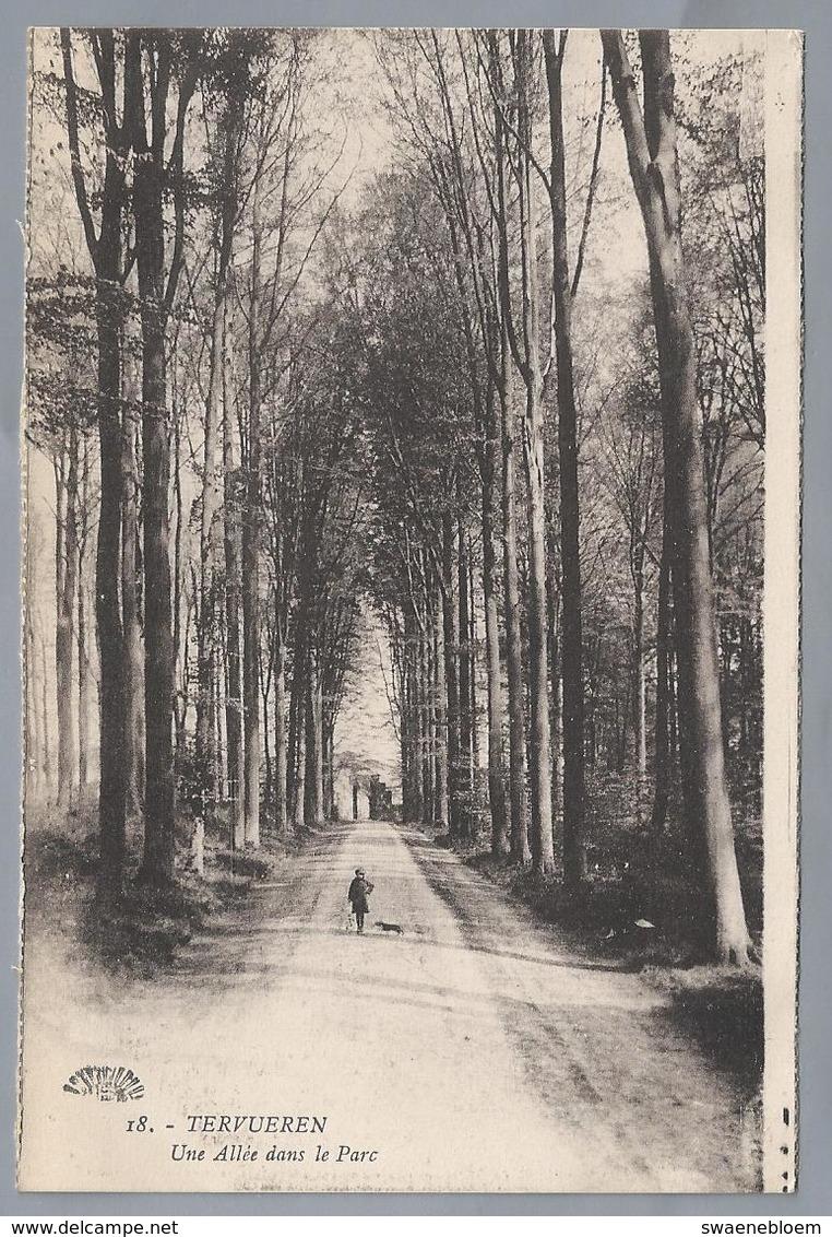 BE.- TERVUEREN. Une Allée Le Parc.- Henri Georges, éditeur, Bruxelles. - Museum