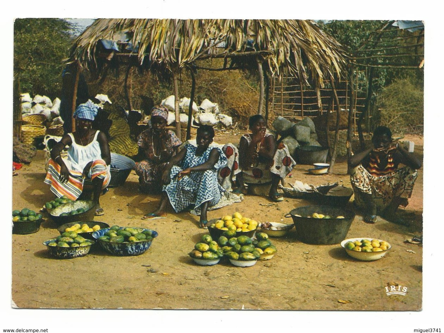 SENEGAL - VENDEURS DE MANGUES - ANNEE 60/70 - Cpa Ecrite  Voir Detail Annonce - Senegal
