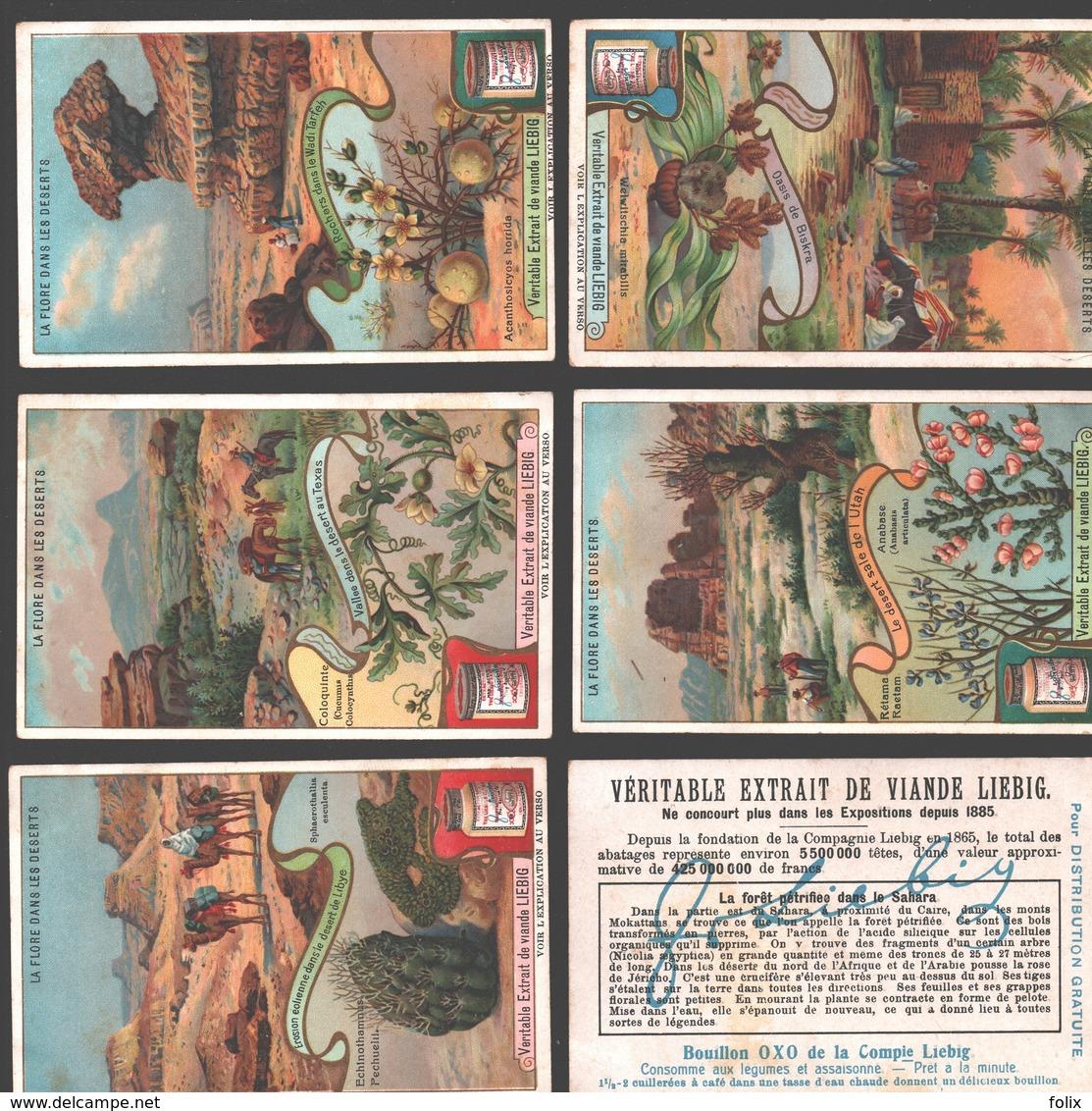 Liebig - Vintage Chromos - Series Of 6 / Série Complète - La Flore Dans Les Déserts - En Français - Liebig