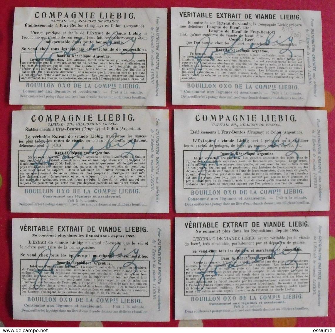 6 Chromo Liebig. Dans La République Argentine. 1909. S 973. Chromos. édition Française - Liebig