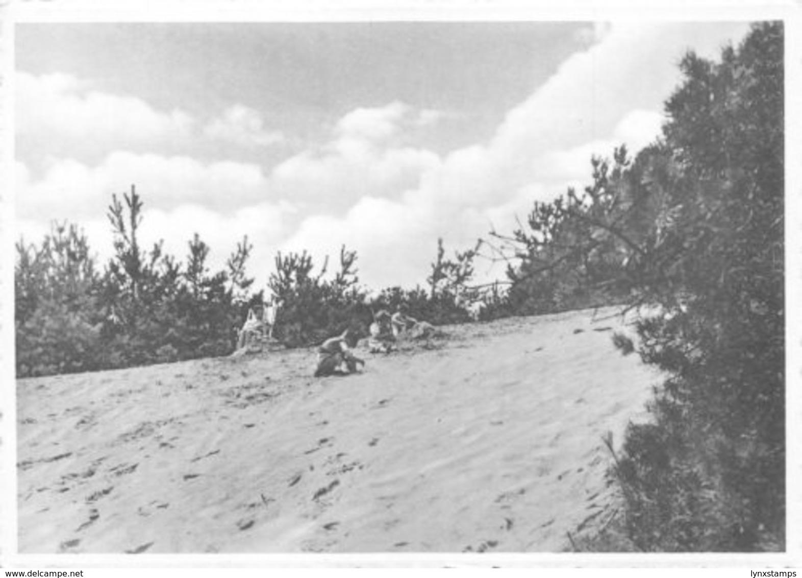 Belgium Maria Middelares Lommel Bos En Duin Desert Beach Postcard - België