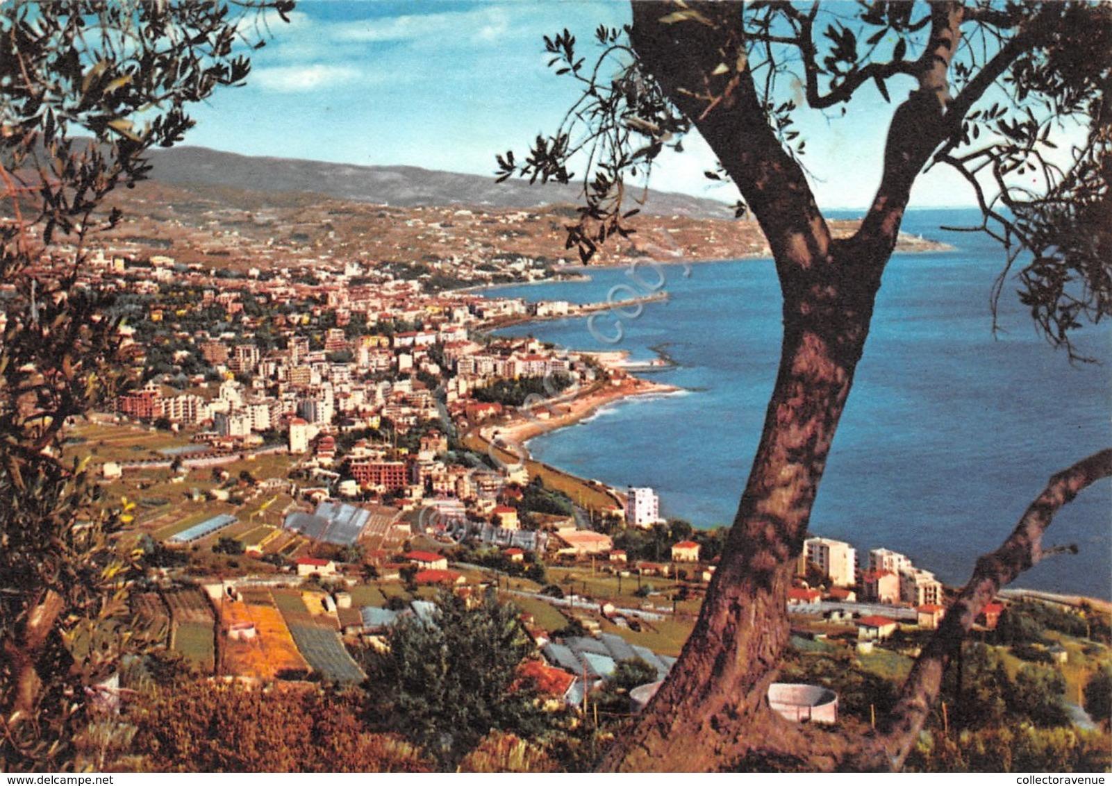 Cartolina Sanremo Panorama Da Coldirodi 1964 - Imperia
