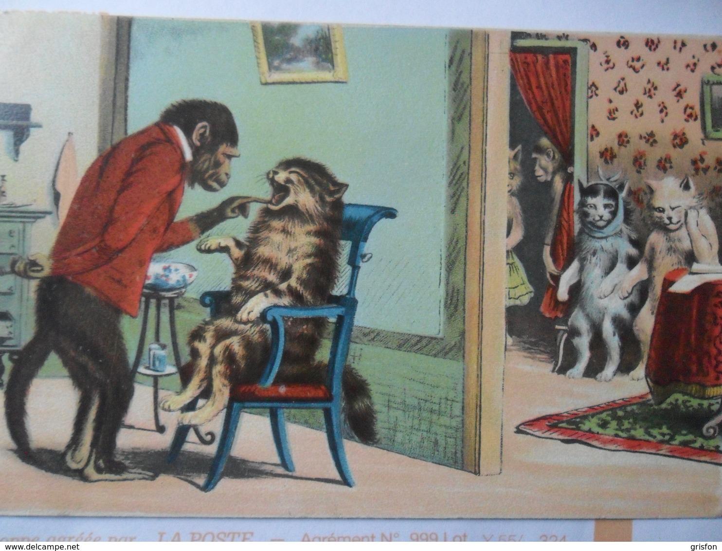 Odontology Singe Dentiste Monkey Cats Chats Patience - Illustratoren & Fotografen