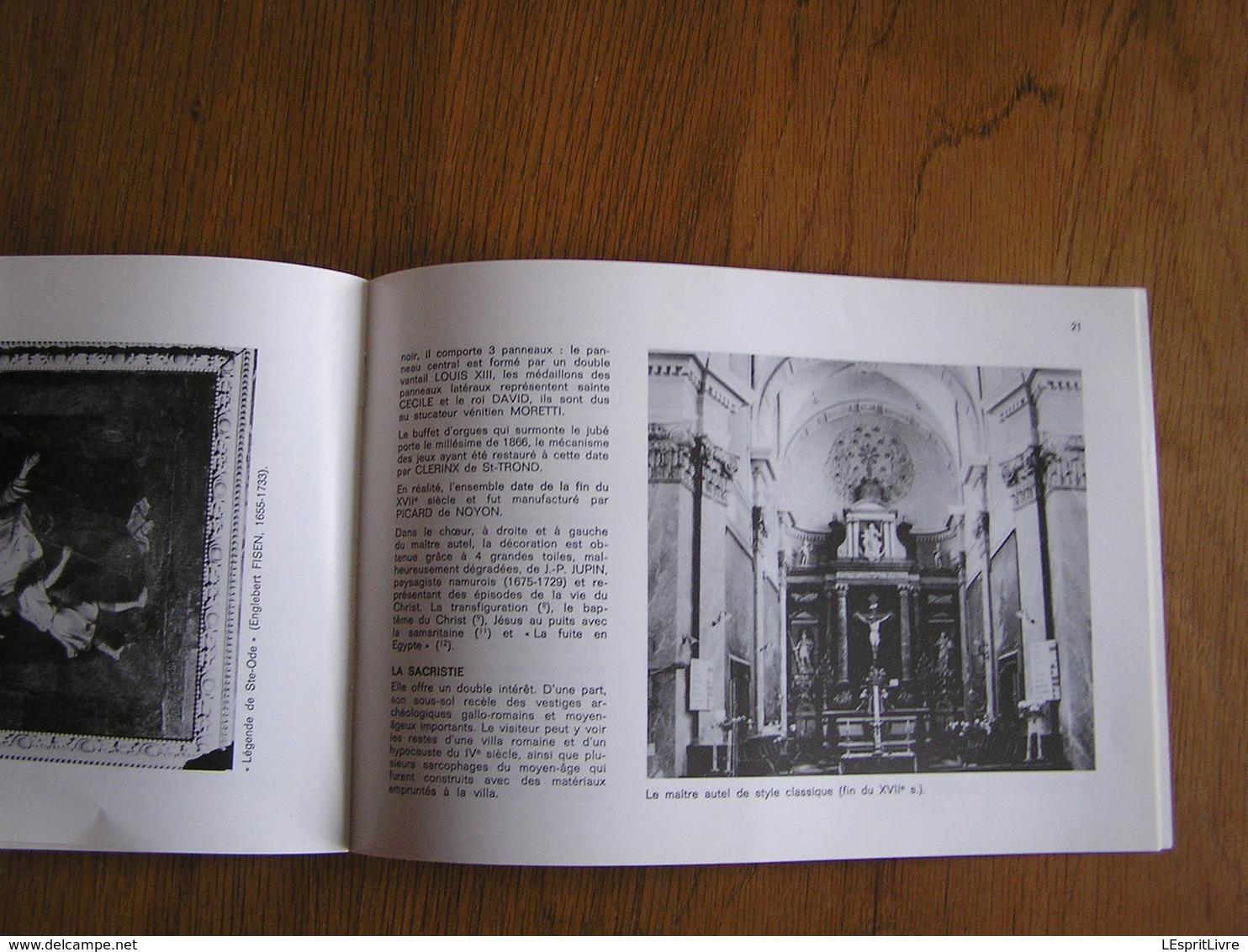 LE SITE ARCHEOLOGIQUE ET LE COLLEGIALE ROMANE D'AMAY Régionalisme Orgue Belgique Eglise Archéologie Architecture - Bélgica