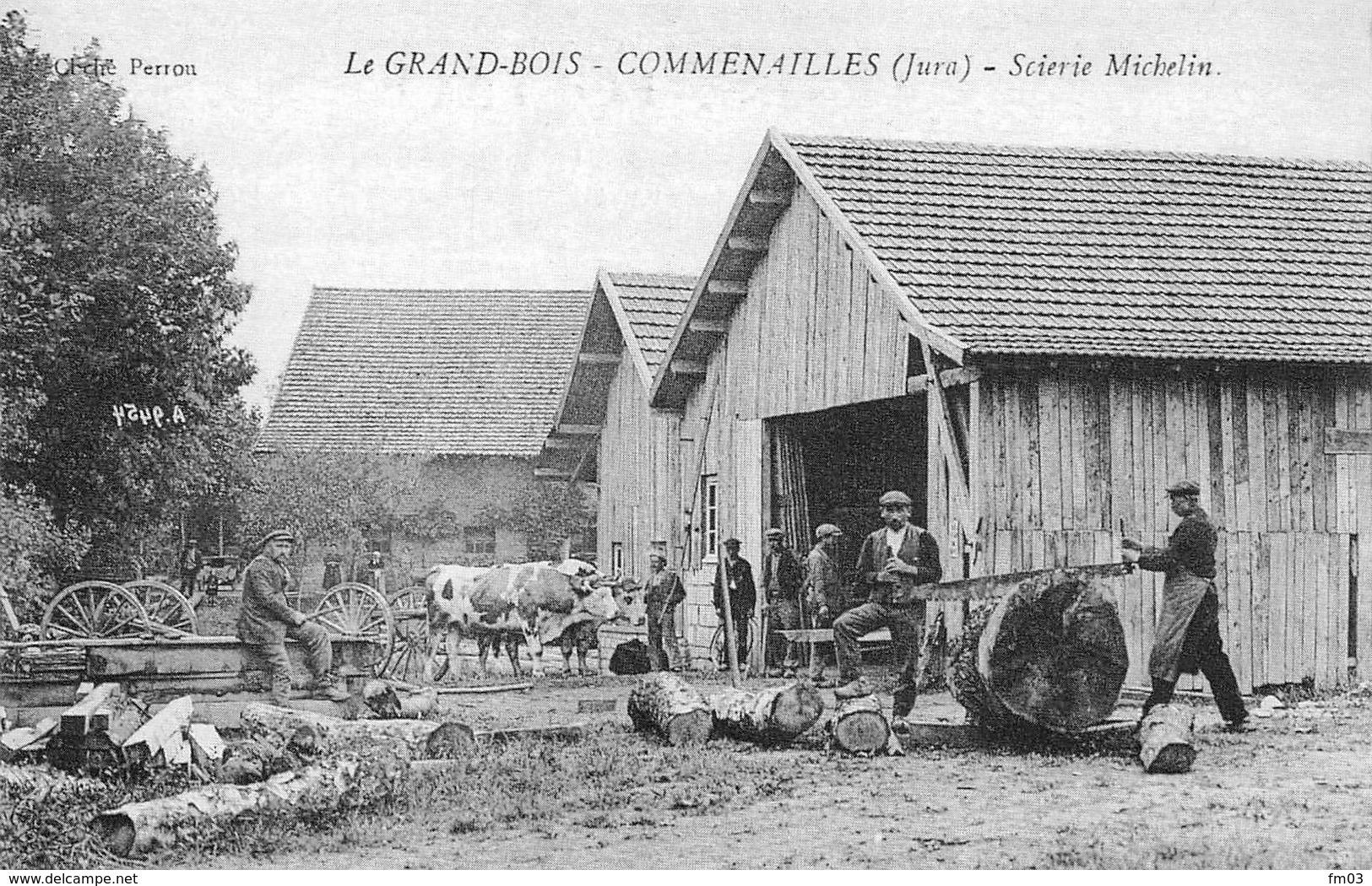 Le Grand Bois Entre Commenailles Et Chapelle Voland Réédition Scierie Michelin Scieurs - France