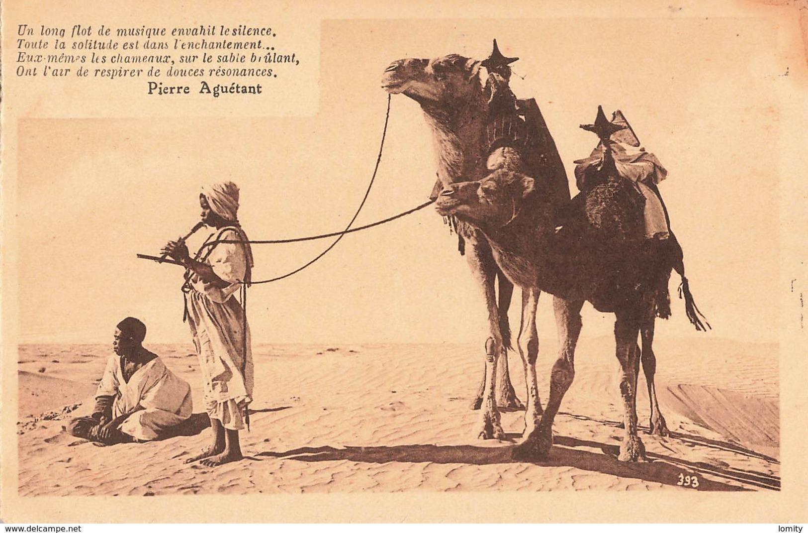 Algerie Texte Pierre Aguetant Un Long Flot De Musique , La Musique Au Desert - Autres