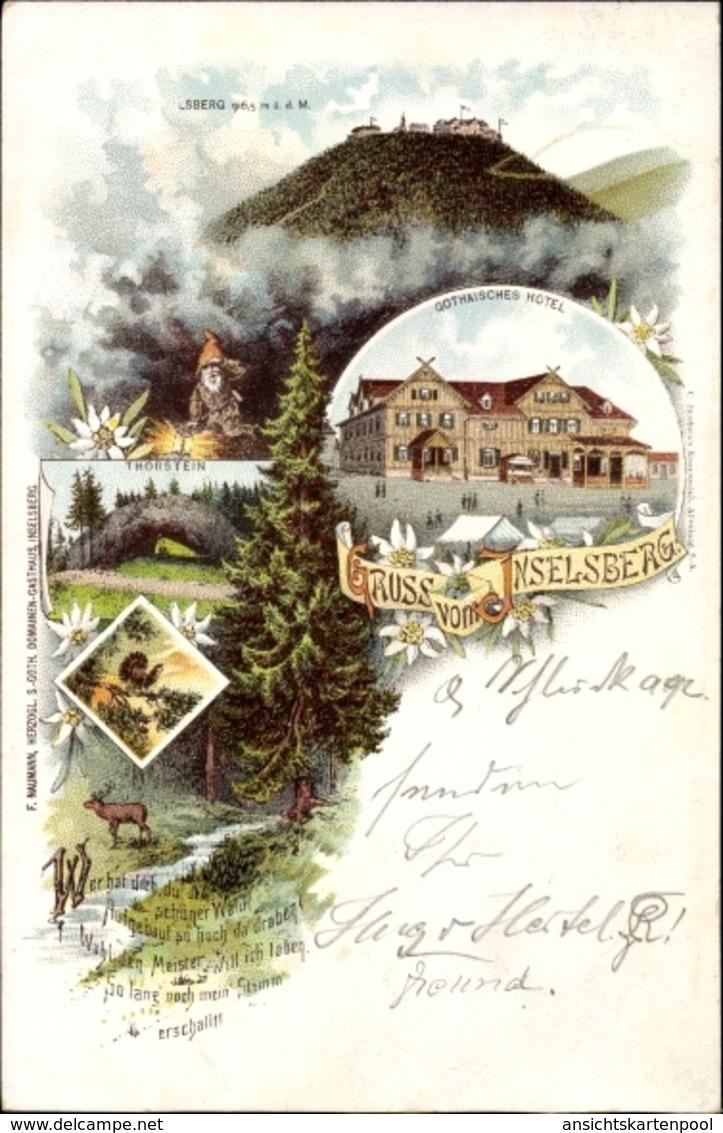 Lithographie Brotterode Trusetal In Thüringen, Inselsberg, Gothaisches Hotel, Torstein, Wald - Duitsland