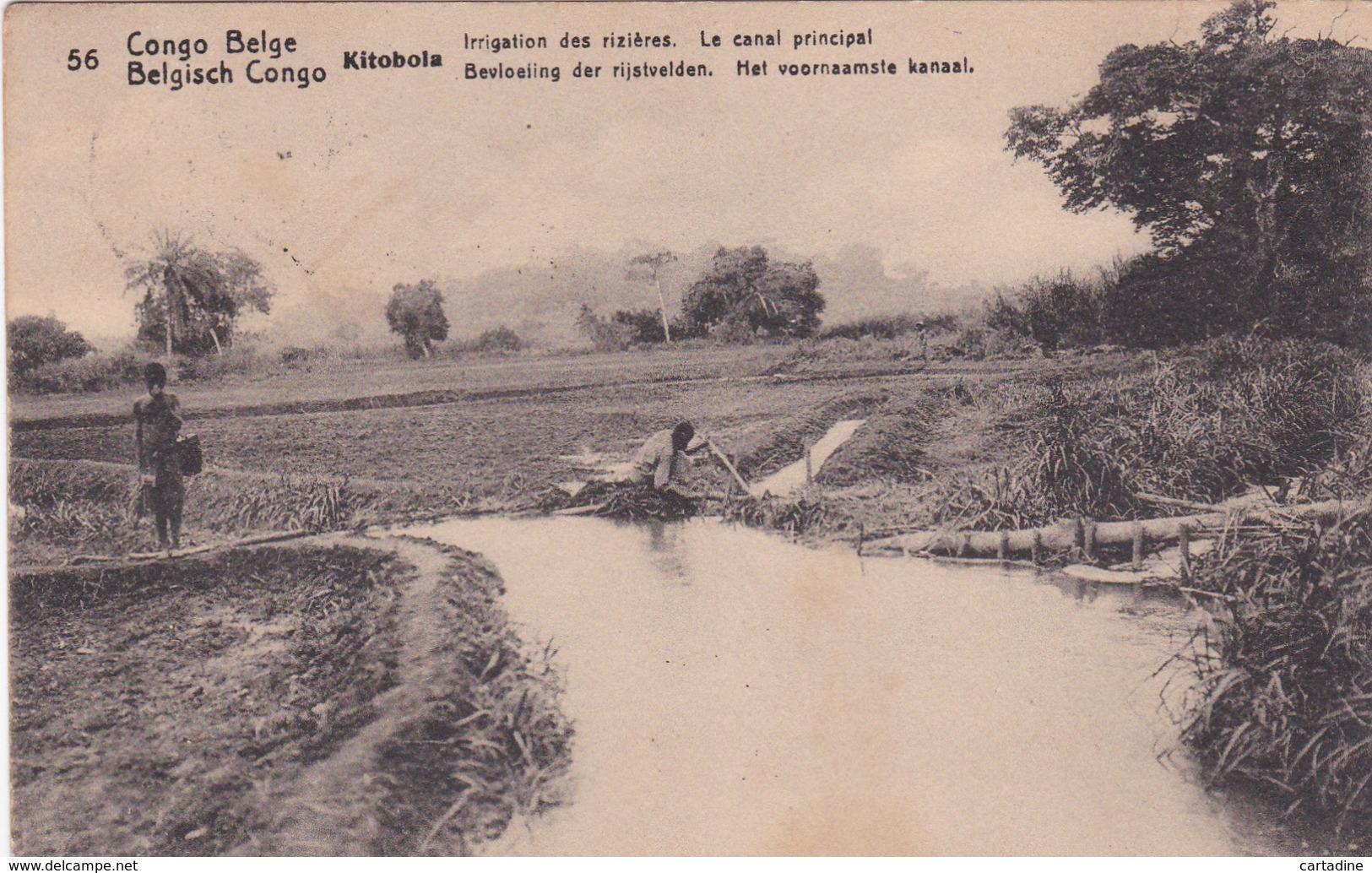 Entier Postal  Congo Belge/ Belgisch Congo - Kitobola - Irrigation Des Rizières - Le Canal Principal -  N° 56 - 1917 - Entiers Postaux