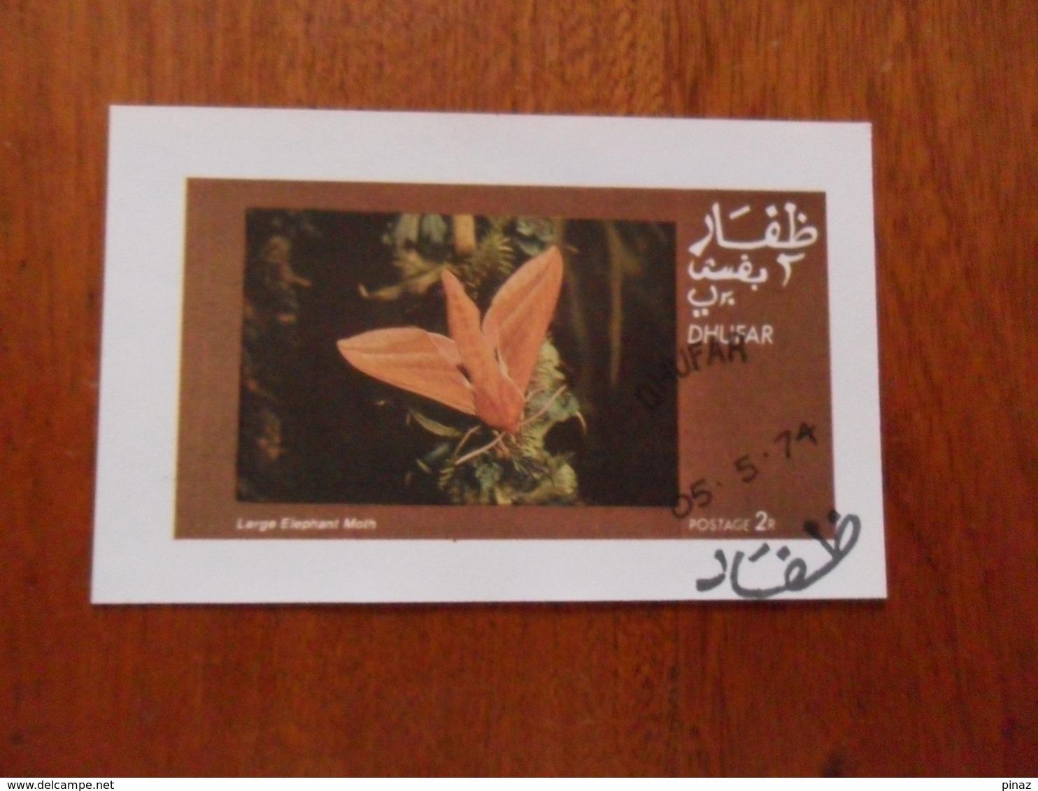 DHUFAR Tematica FARFALLE - Farfalle