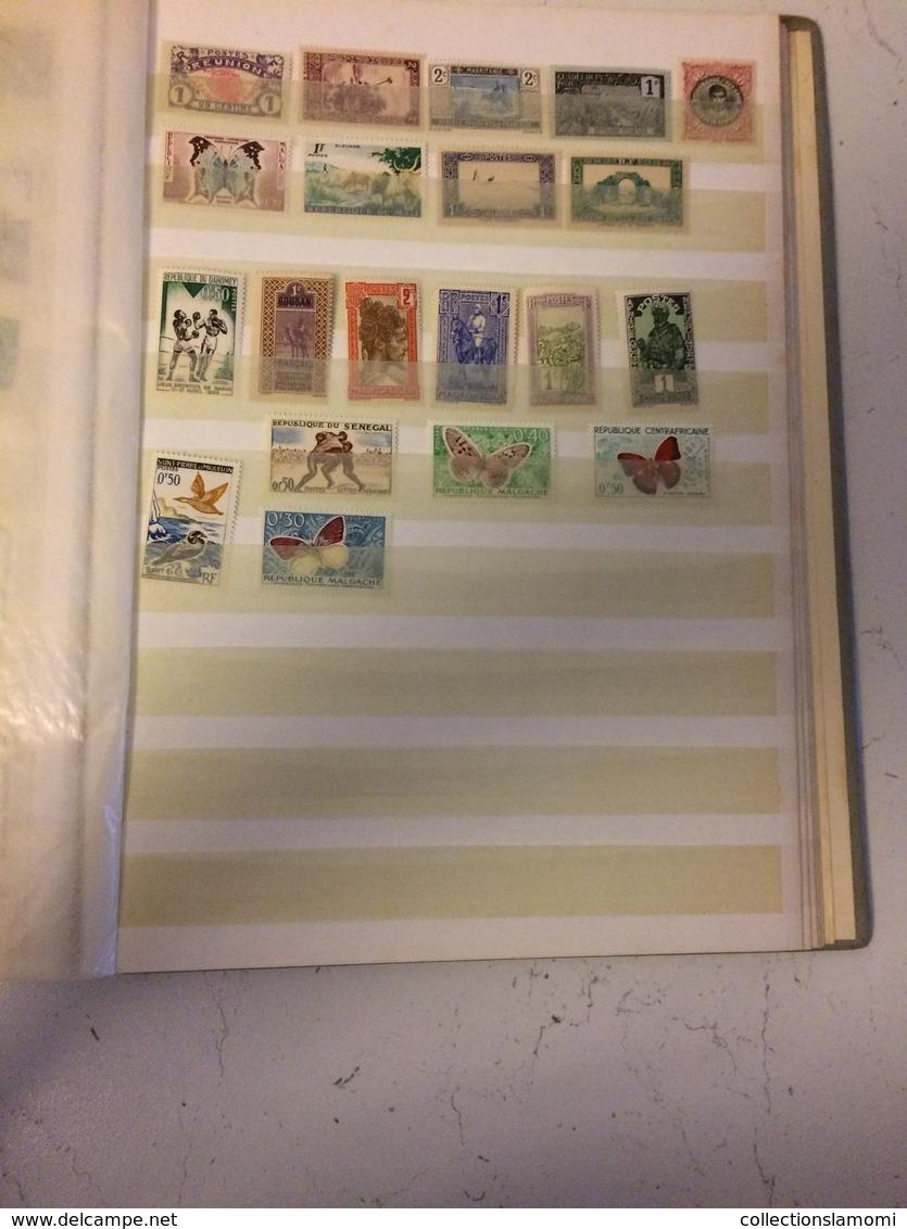 Album Timbres Neufs, Différent Pays Du Monde   (voir Photos Pays Inscrit)(dernière Photos Timbres Oblitéré Portugal) - Timbres