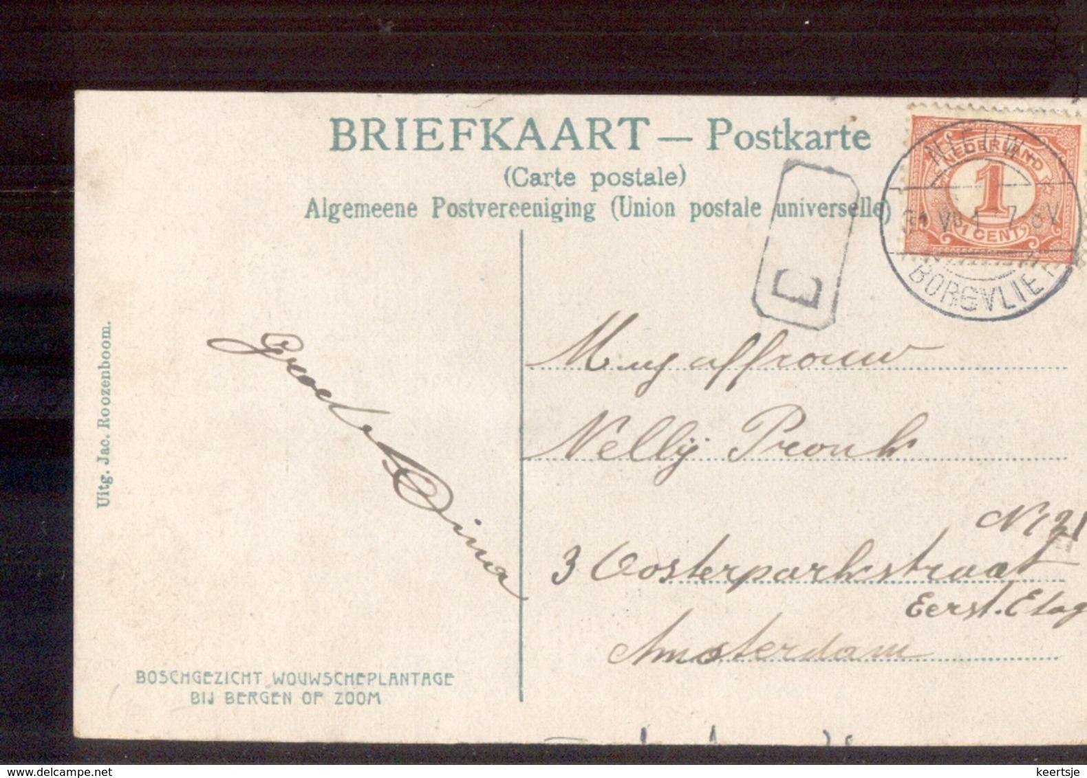Nieuw Borgvliet Langebalk - 1917 - Poststempel
